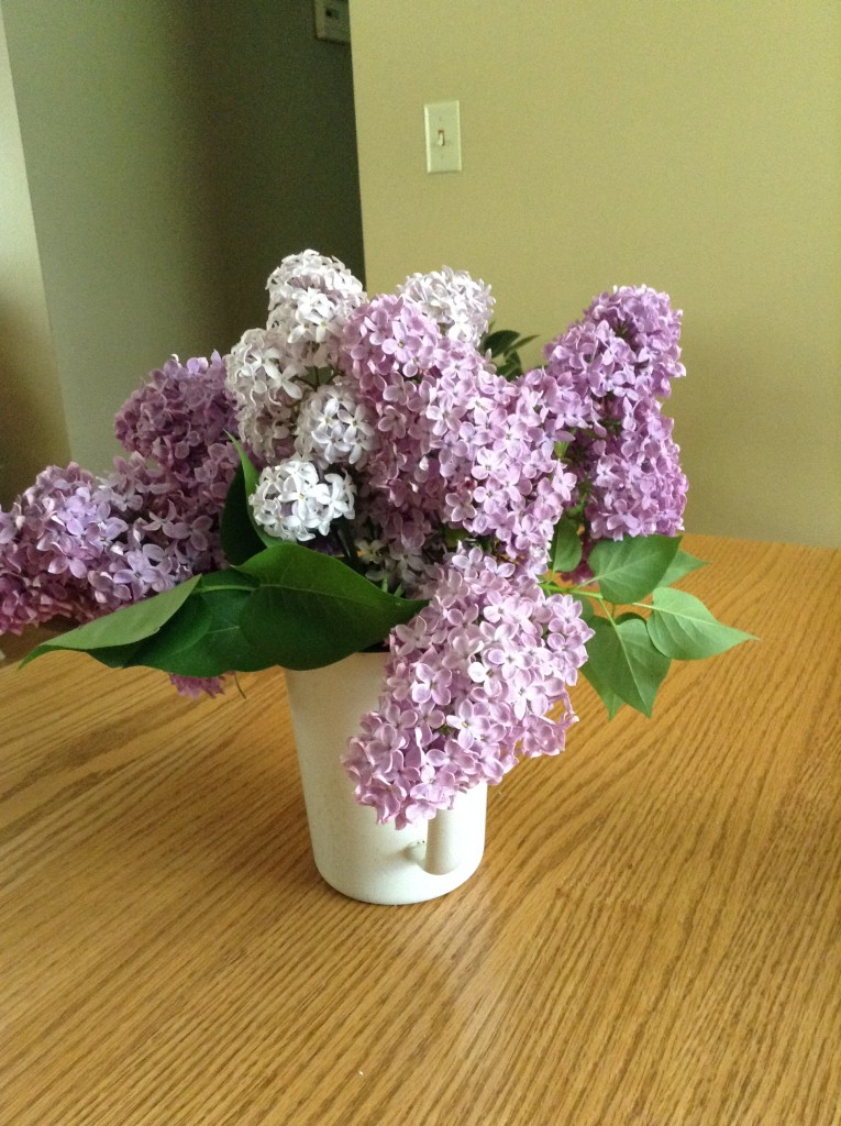 This has nothing to do with this post; but aren't the lilacs beautiful right now!